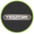 Tintz Windows